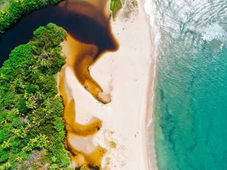 Aerial top view of river merging to tropical white sand beach and turquoise clear sea water with small waves and palm trees background. Praia do Forte, Bahia, Brazil. Travel tropical destination