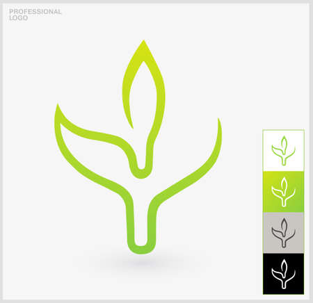 Eco elements. A single green leaf on a white background.