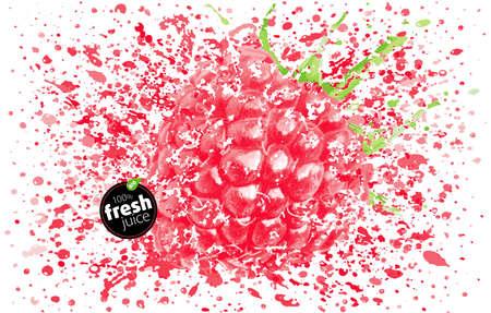 Raspberry with a splash of fresh juice. Explosion and splashes of ripe juicy fruit. White background. EPS vector Illustration Stock Illustratie