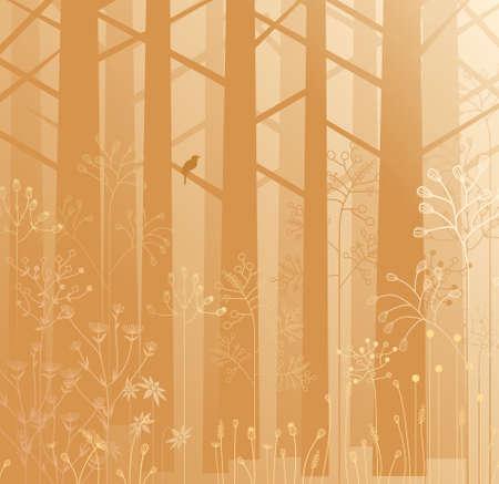 misty forest: Naturaleza esc�nica, diversos tipos de plantas y �rboles en un bosque de niebla. Vectores