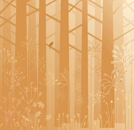 undergrowth: Nature scenic, various kind of plants and trees in a misty forest. Illustration