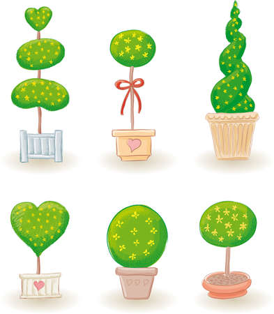 Six typical little garden trees in various shapes-2