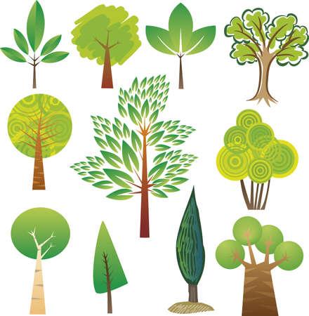 zypresse: Proben verschiedener Baumarten in verschiedenen Stilrichtungen