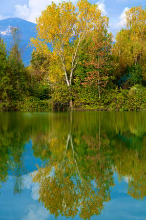 seasonable: A tree with the typical autumn colors and its reflection in a lake.