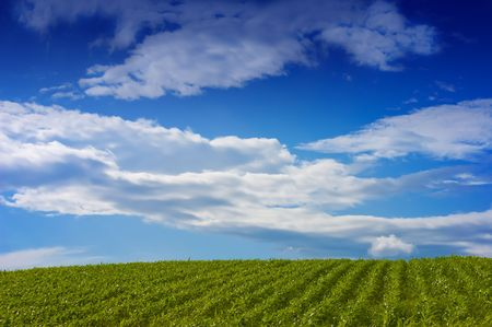 Looking over a green landscape to the horizon, under a dramatic blue sky with gathering clouds