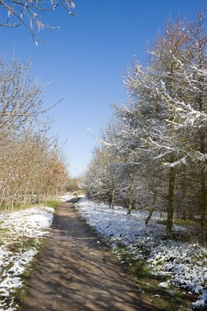 Winter landscape of a footpath through trees covered with a light dusting of snow Stock Photo
