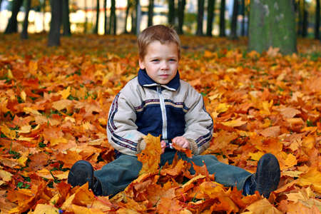 Happy child sits on autumn leaves photo