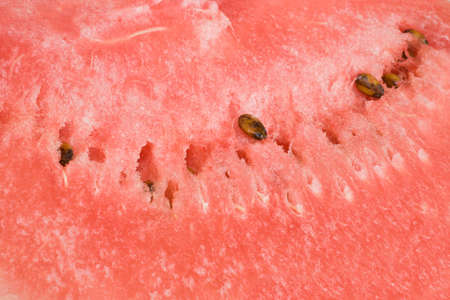 flesh colour: Watermelon flesh with seeds, great for background and texture