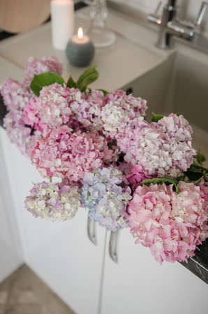 Pink-blue hydrangea in the kitchen in the apartment