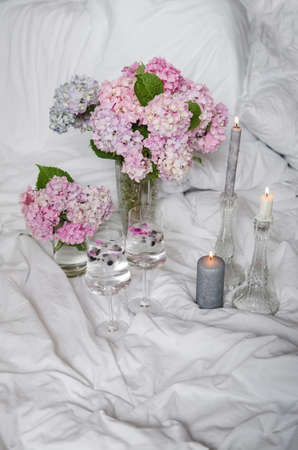 Beautiful blue-pink hydrangea in a vase on a white bed background