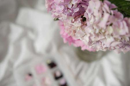Hortensia flower, hydrangea flower, background. Stock Photo