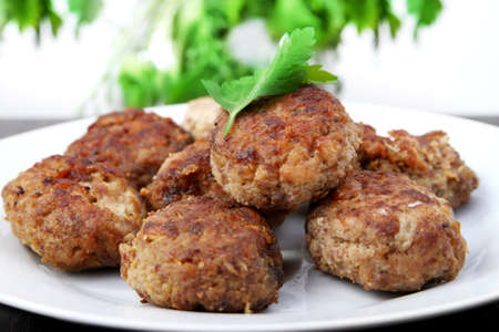 cutlets of meat photo