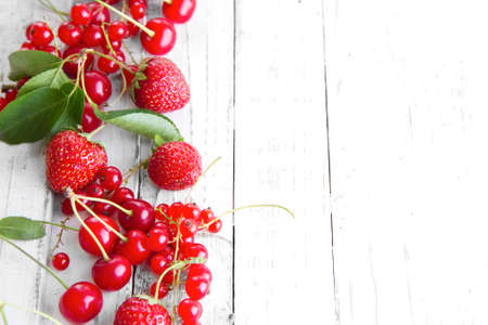many berries raspberry strawberry knotweed Banque d'images