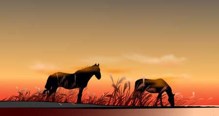 steppe: steppe horse