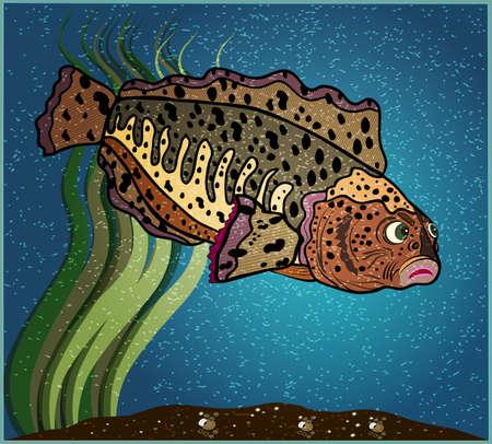catfish: Catfish Illustration