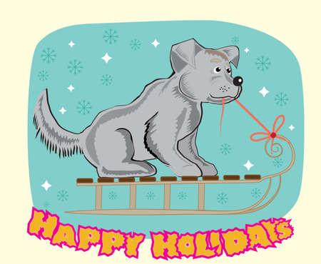 sledge dog: winter dog