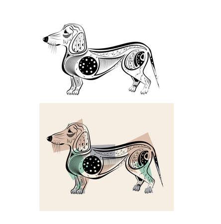 dachshund: funny dachshund