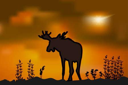 Moose silhouette at sunset 일러스트