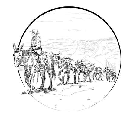 drover leads a caravan with mules