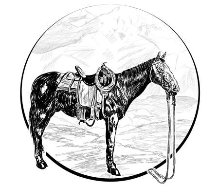 a horse without a rider stands in the mountains