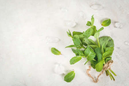 Fresh organic melissa mint on a white table, with ice cubes on a white stone table. Copy space  top view Stock Photo