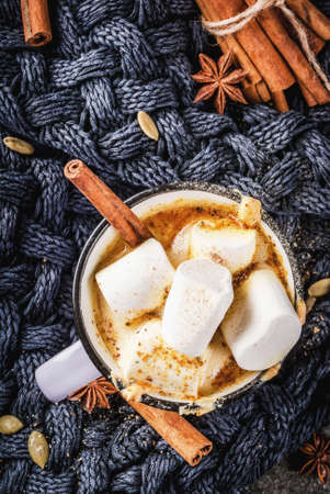 Autumn and winter hot drinks. Ideas for Christmas, Thanksgiving, Halloween. Cup with hot spicy pumpkin white chocolate, with marshmallow and cinnamon, anise. Cozy, with knitted plaid. Copy space top view
