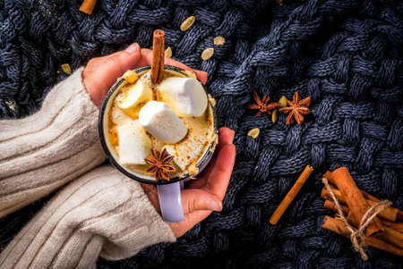 Autumn, winter drinks. Ideas for Christmas, Thanksgiving, Halloween. Girl drink hot spicy pumpkin white chocolate, with marshmallow, cinnamon, anise. With knitted plaid. Copy space, hands, top view Stock Photo