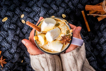Autumn, winter drinks. Ideas for Christmas, Thanksgiving, Halloween. Girl drink hot spicy pumpkin white chocolate, with marshmallow, cinnamon, anise. With knitted plaid. Copy space, hands, top view 스톡 콘텐츠