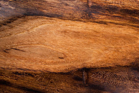 Background, old textured wood, elm, top view copy space Stock Photo