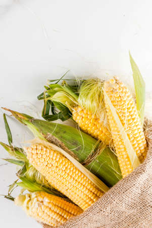 Fresh raw organic farm corn in a bag, on a white marble table. Copy space top view Reklamní fotografie