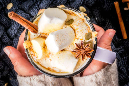 Autumn, winter drinks. Ideas for Christmas, Thanksgiving, Halloween. Girl drink hot spicy pumpkin white chocolate, with marshmallow, cinnamon, anise. With knitted plaid. Copy space, hands, close view Stock fotó