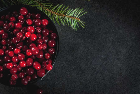 Autumn harvest, seasonal berries. Fresh raw cranberries in a black bowl, with Christmas tree branches, on black table, top view copy space