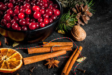 Ingredients for Christmas, winter baking cookies. Gingerbread, fruitcake, seasonal drinks. Cranberries, dried oranges, cinnamon, spices on a black stone table, copy space