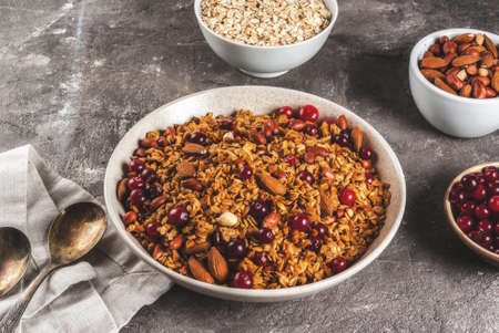 Ideas for a winter, autumn breakfast. Thanksgiving, Christmas. Homemade fresh cooked honey granola with nuts (almonds, peanuts, hazelnuts) and cranberries. On gray concrete table, Copy space