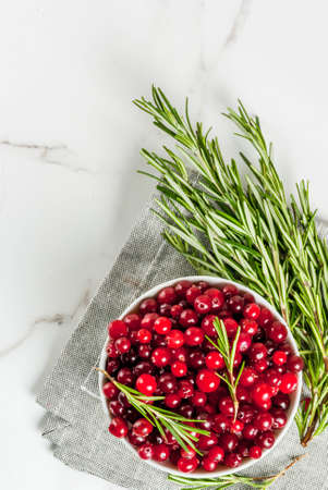 Ingredients for autumn and winter cocktails, a branch of rosemary and a cranberry on a white marble table, top view copy space