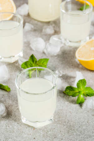 Traditional italian alcoholic homemade beverage, lemon liqueur limoncello with fresh citrus, ice and mint, on grey stone table, copy space Stock Photo - 89214281