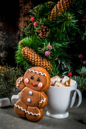 Traditional Christmas treat. Hot chocolate with marshmallow, gingerbread man cookie, fir tree branches and xmas holiday decorations copy space