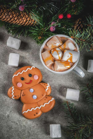 Traditional Christmas treat. Hot chocolate with marshmallow, gingerbread man cookie, fir tree branches and xmas holiday decorations copy space top view Lizenzfreie Bilder