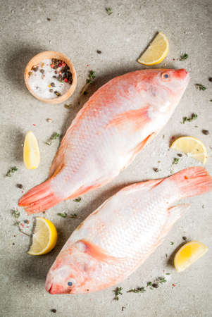 Fresh raw fish pink tilapia with spices for cooking - lemon, salt, pepper, herbs, on gray stone table, copy space top view Banco de Imagens