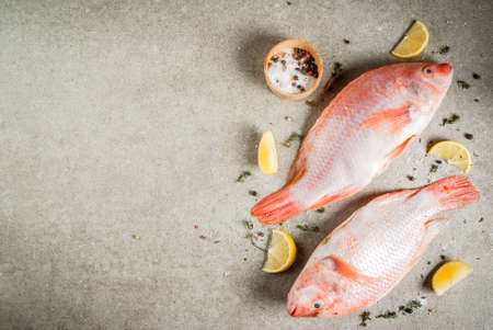 Fresh raw fish pink tilapia with spices for cooking - lemon, salt, pepper, herbs, on gray stone table, copy space Banco de Imagens - 90449331