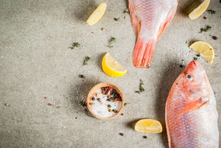 Fresh raw fish pink tilapia with spices for cooking - lemon, salt, pepper, herbs, on gray stone table, copy space Imagens