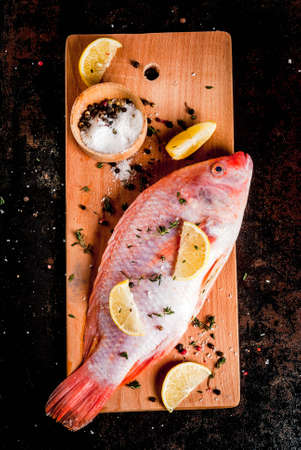 Fresh raw fish pink tilapia with spices for cooking - lemon, salt, pepper, herbs, on  black rusty metal table, copy space top view Banco de Imagens - 90308620