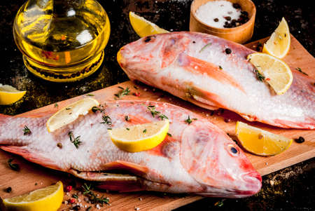 Fresh raw fish pink tilapia with spices for cooking - lemon, salt, pepper, herbs, on  black rusty metal table, copy space