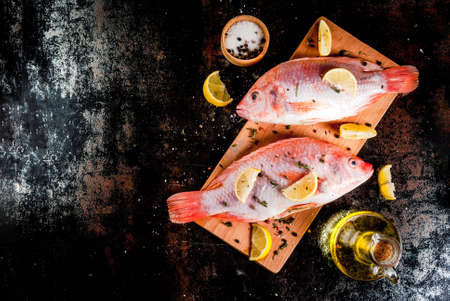 Fresh raw fish pink tilapia with spices for cooking - lemon, salt, pepper, herbs, on  black rusty metal table, copy space top view Lizenzfreie Bilder