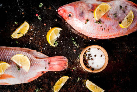 Fresh raw fish pink tilapia with spices for cooking - lemon, salt, pepper, herbs, on  black rusty metal table, copy space top view Imagens