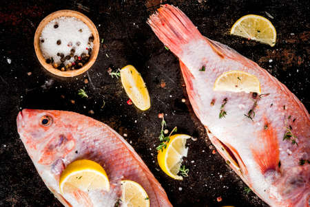 Fresh raw fish pink tilapia with spices for cooking - lemon, salt, pepper, herbs, on  black rusty metal table, copy space top view Banco de Imagens - 89627505