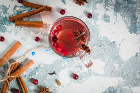 Hot autumn drink, fruit spicy tea with cranberry, cinnamon, anise. On light blue concrete table, with ingredients copy space top view