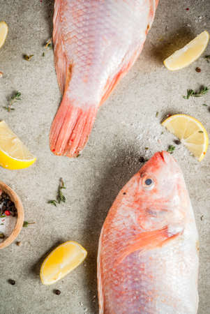 Fresh raw fish pink tilapia with spices for cooking - lemon, salt, pepper, herbs, on gray stone table, copy space Banco de Imagens - 90074476