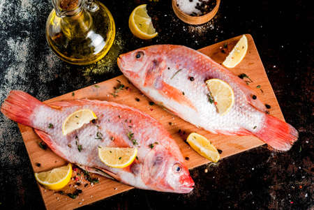 Fresh raw fish pink tilapia with spices for cooking - lemon, salt, pepper, herbs, on  black rusty metal table, copy space Banco de Imagens - 90567491