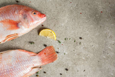Fresh raw fish pink tilapia with spices for cooking - lemon, salt, pepper, herbs, on gray stone table, copy space Banco de Imagens